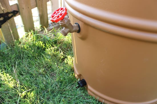Earthminded RainStation Rain Barrel